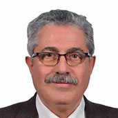Dr. Aly ElBahrawy