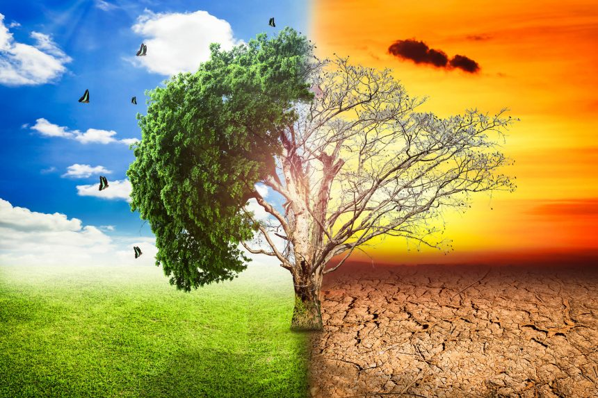 Theme 4- Climate Change Impacts, Mitigation and Adaptation